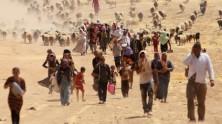Yezidi vluchtelingen in Noord-Irak