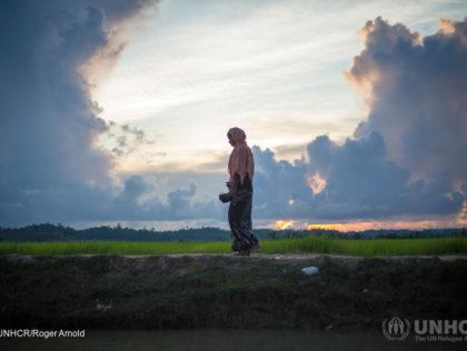 Rohingya - Humanity House