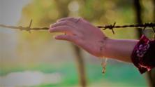 Crimes against Yazidis: Impact and Response 3